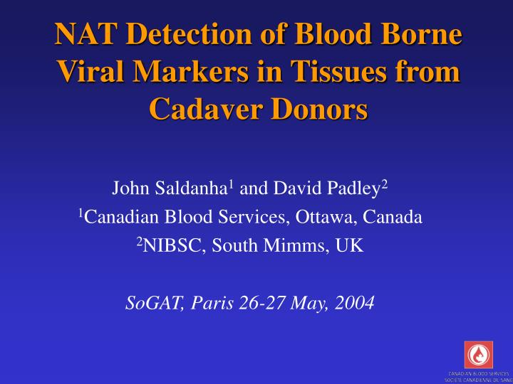 Nat detection of blood borne viral markers in tissues from cadaver donors