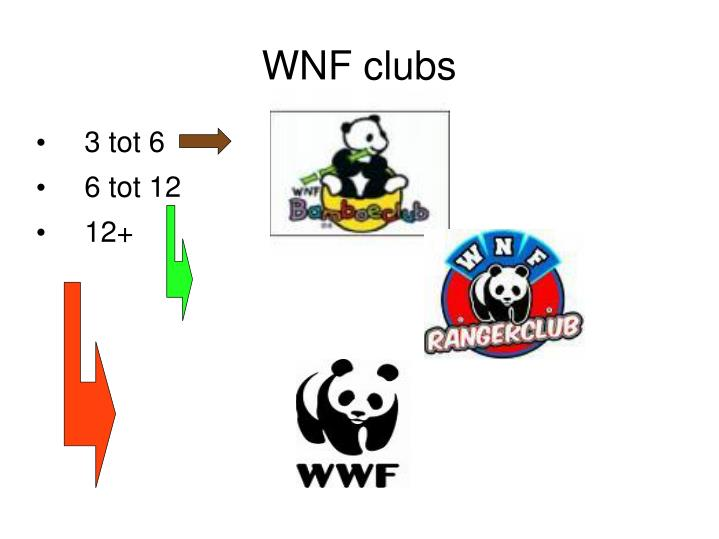 WNF clubs