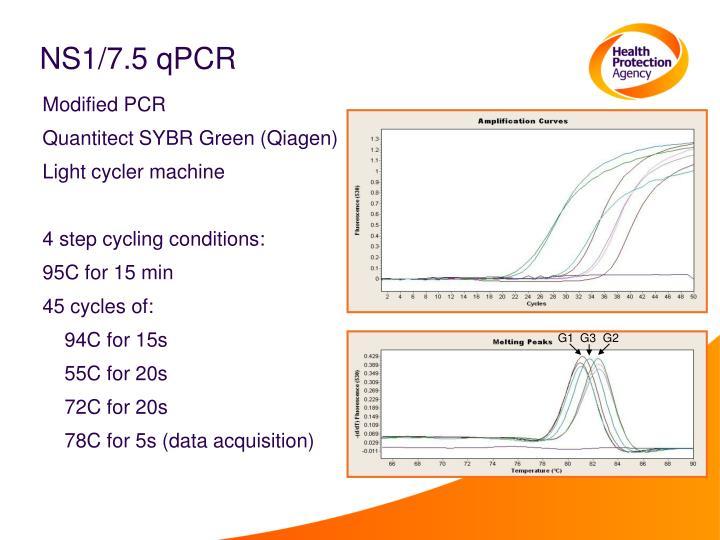 NS1/7.5 qPCR