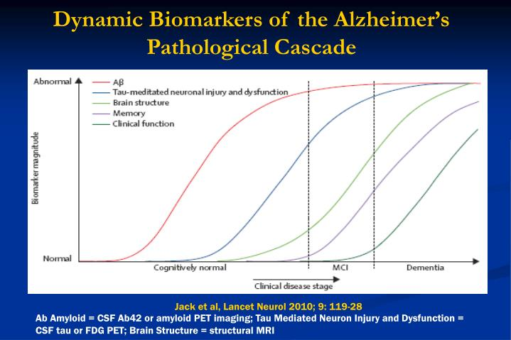 Dynamic Biomarkers of the Alzheimer's Pathological Cascade