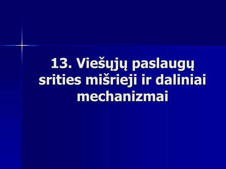 13. Viešųjų paslaugų srities mišrieji ir daliniai mechanizmai