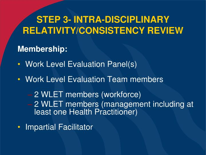 STEP 3- INTRA-DISCIPLINARY RELATIVITY/CONSISTENCY REVIEW