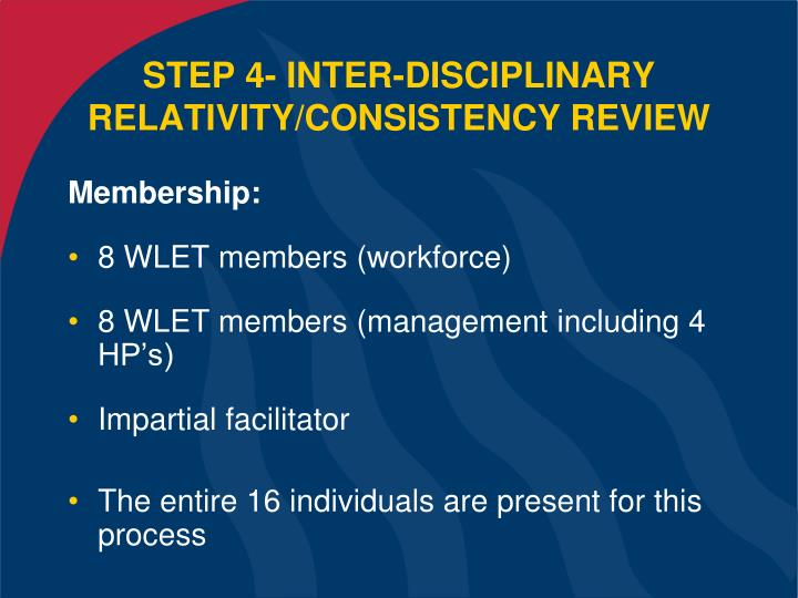 STEP 4- INTER-DISCIPLINARY RELATIVITY/CONSISTENCY REVIEW