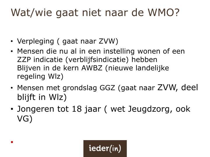 Wat/wie gaat niet naar de WMO?