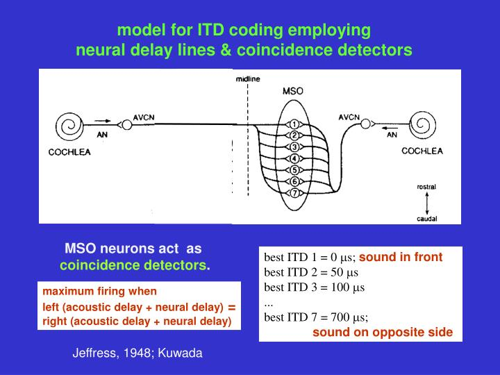 model for ITD coding employing