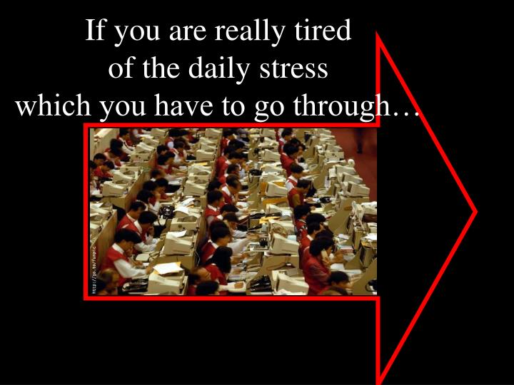 If you are really tired of the daily stress which you have to go through