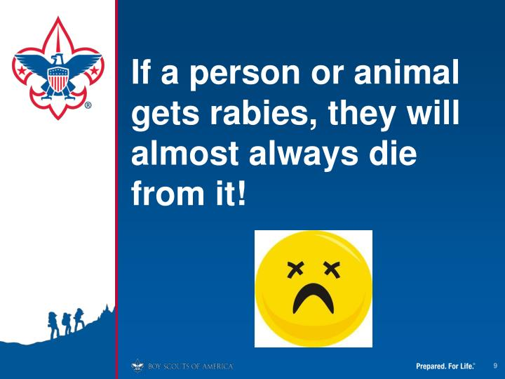 If a person or animal gets rabies, they will almost always die from it!