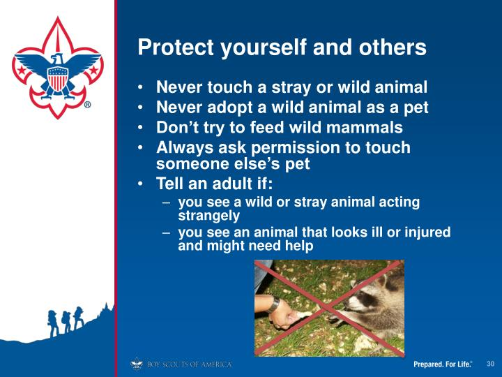 Protect yourself and others