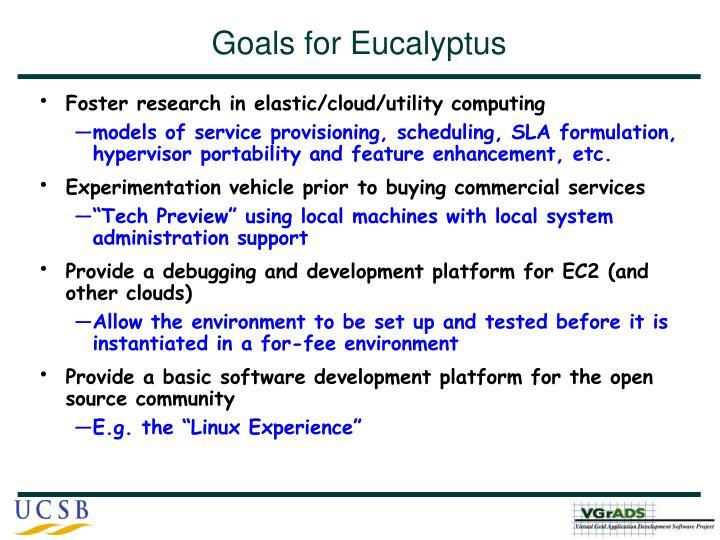 Goals for Eucalyptus