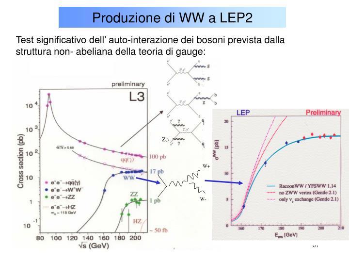 Produzione di WW a LEP2