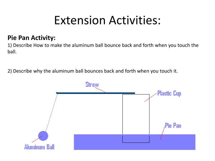 Extension Activities: