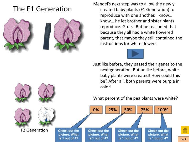 The F1 Generation