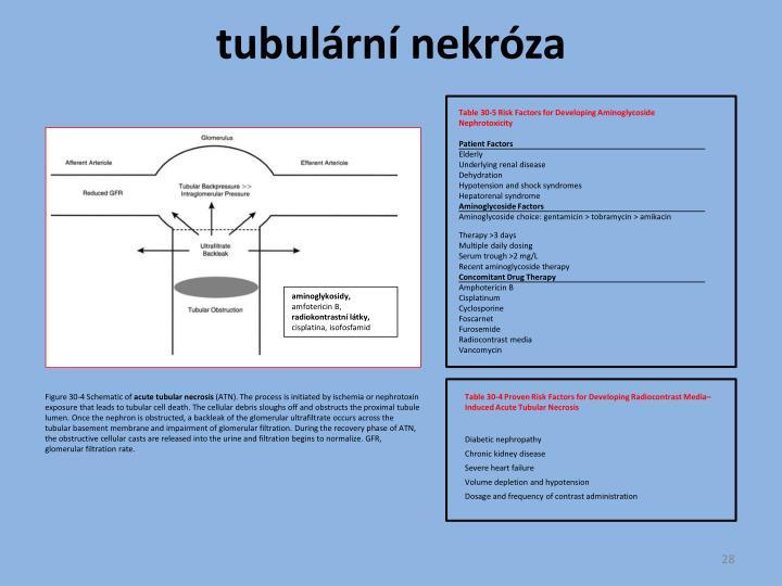 tubulární nekróza