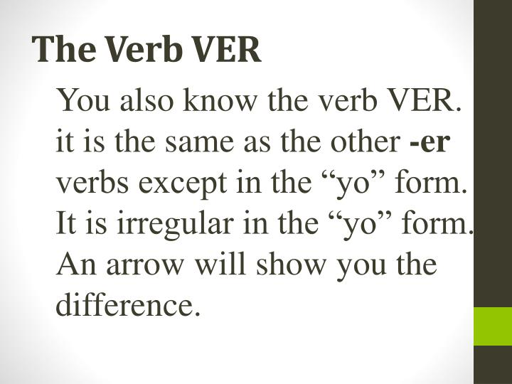 The Verb VER
