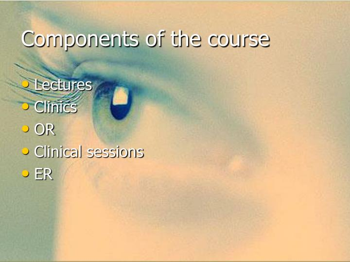 Components of the course
