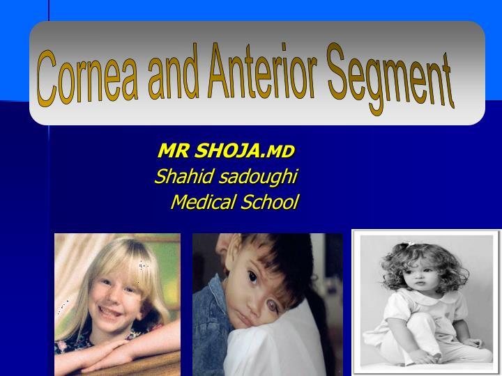 Mr shoja md shahid sadoughi medical school