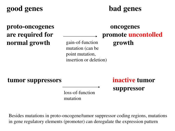 good genes                                  bad genes