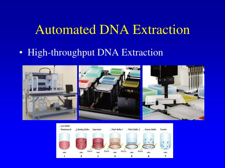 Automated DNA Extraction