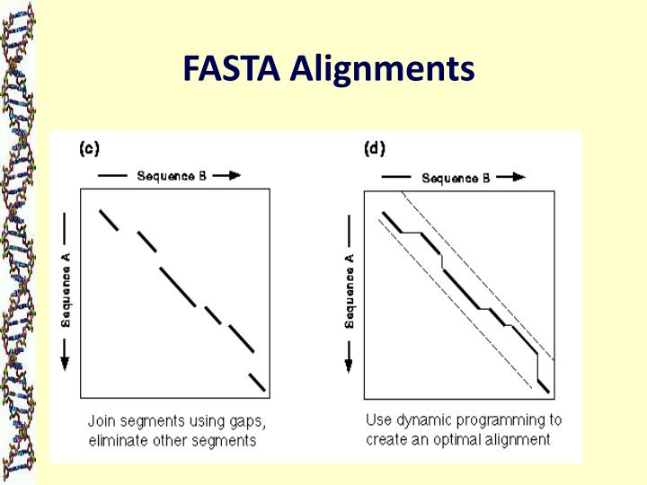 FASTA Alignments