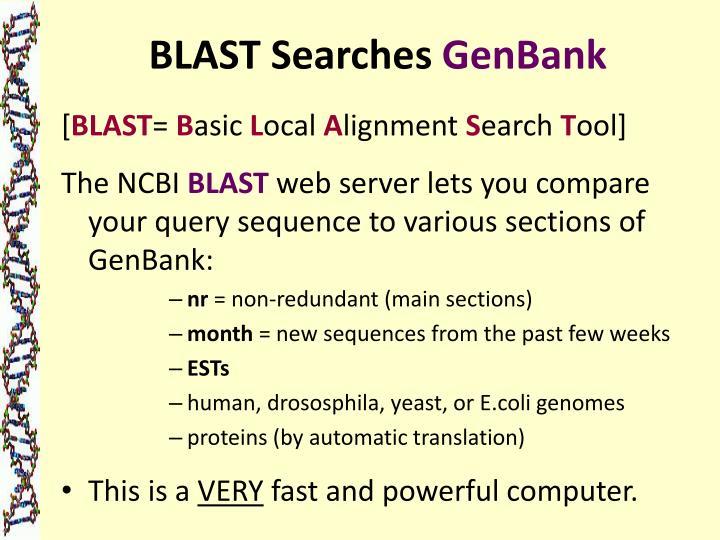 BLAST Searches