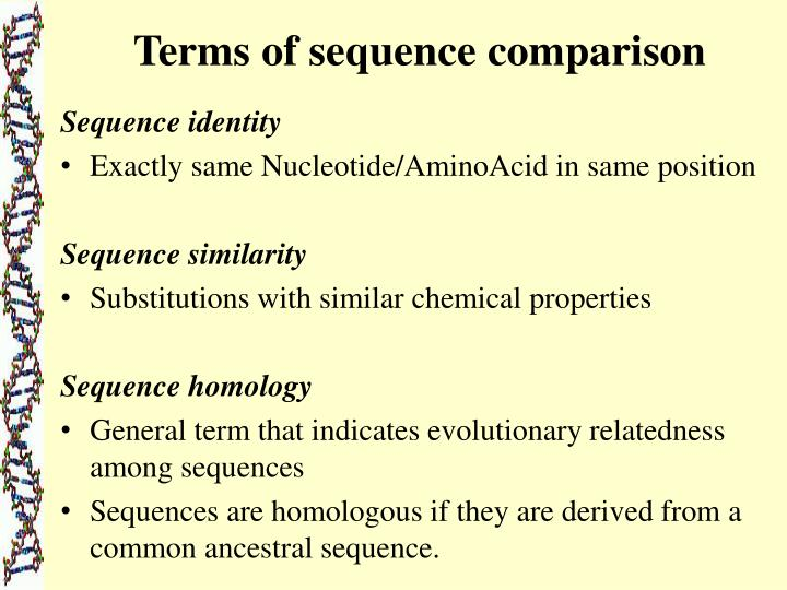 Terms of sequence comparison
