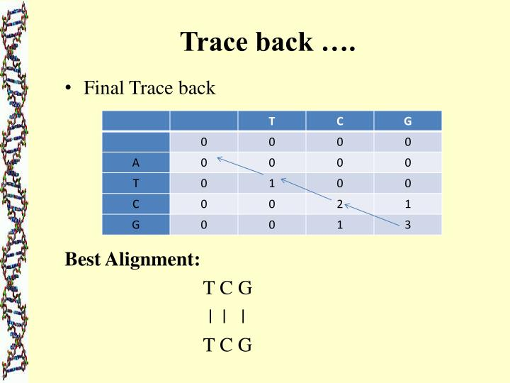 Trace back ….