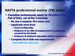 nafta professional worker tn status