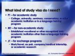what kind of study visa do i need