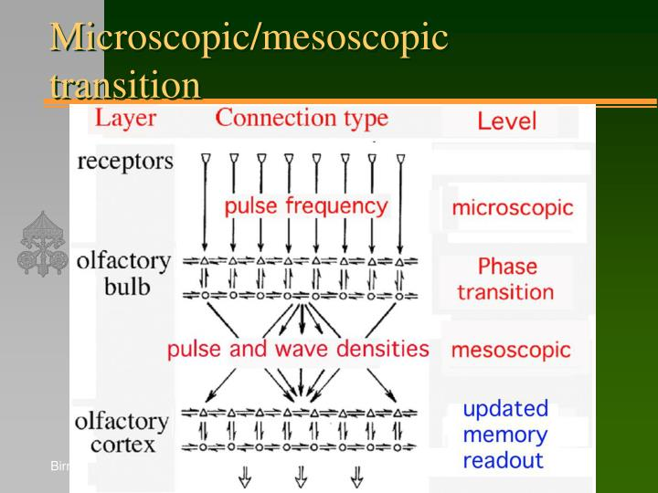 Microscopic/mesoscopic transition
