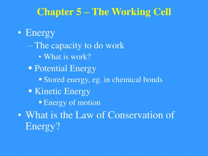 Chapter 5 the working cell