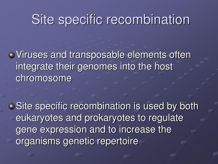 Site specific recombination