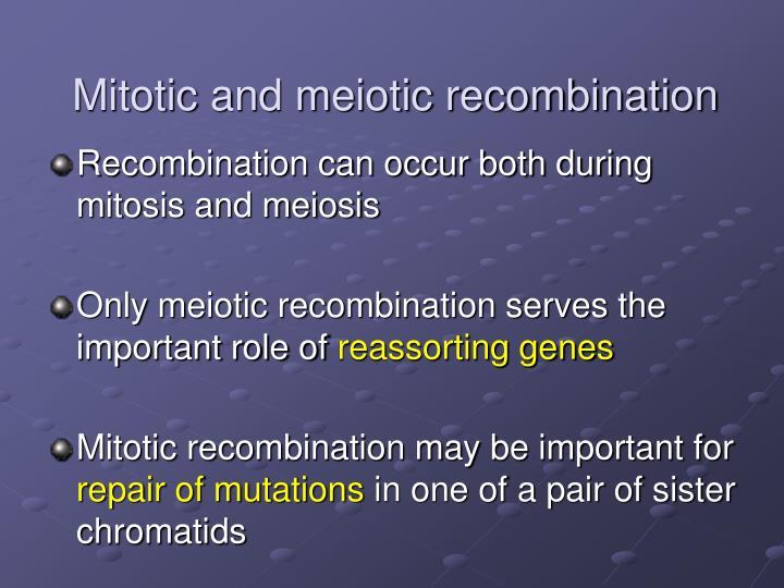 Mitotic and meiotic recombination