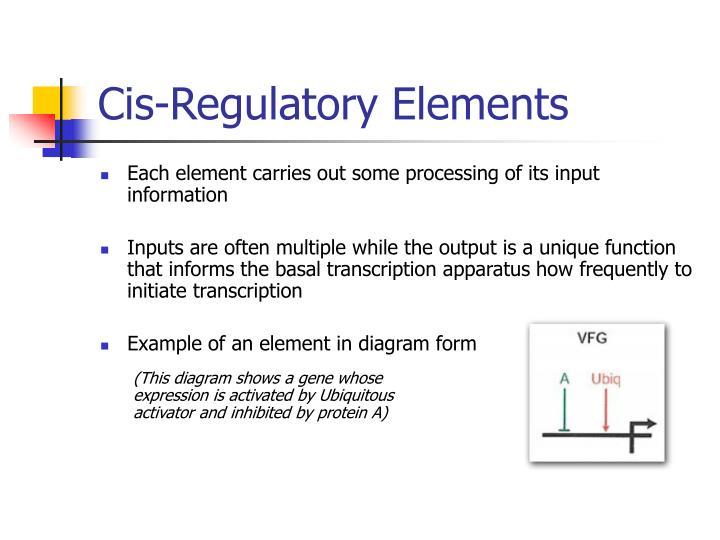 Cis-Regulatory Elements