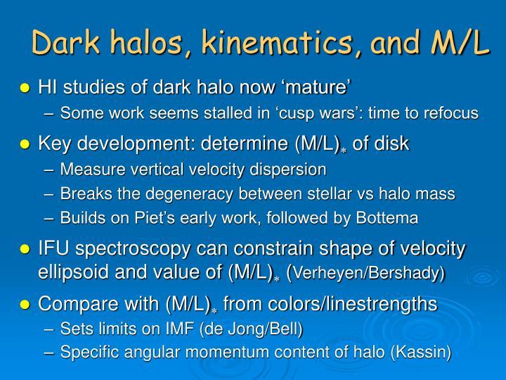 Dark halos, kinematics, and M/L