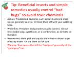 tip beneficial insects and simple remedies usually control bad bugs so avoid toxic chemicals