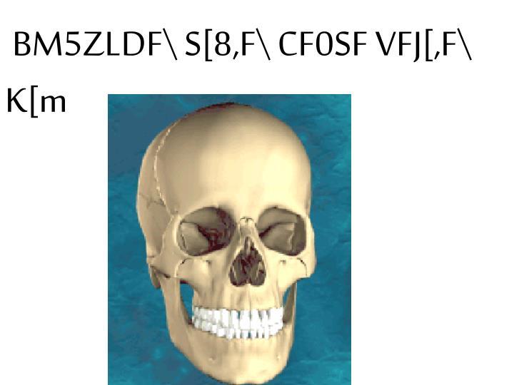 BM5ZLDF\ S[8,F\ CF0SF VFJ[,F\ K[m