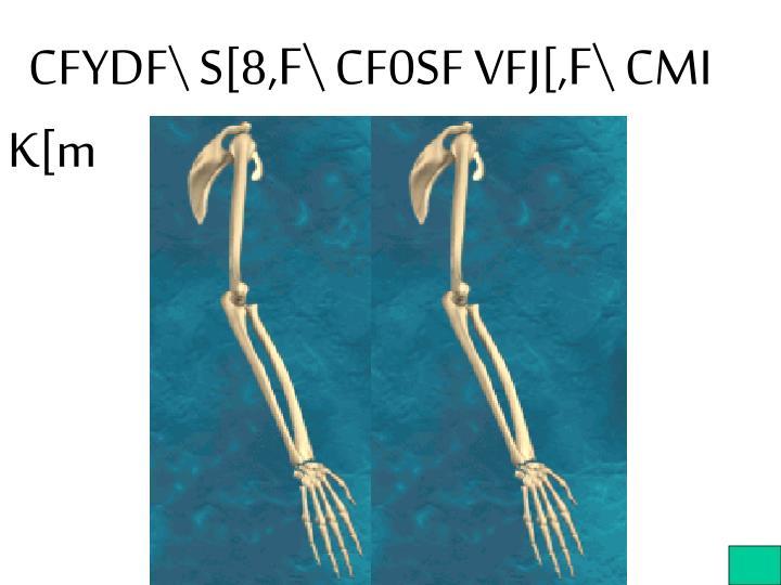 CFYDF\ S[8,