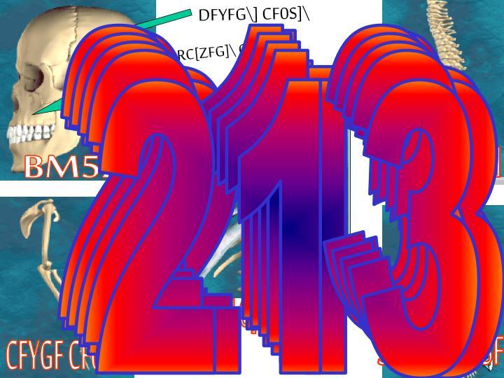 DFYFG\] CF0S]\