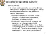 consolidated spending overview3