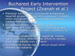 bucharest early intervention project zeanah et al