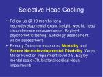 selective head cooling3