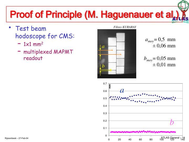 Proof of Principle (M. Haguenauer et al.)