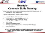 example common skills training