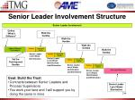 senior leader involvement structure