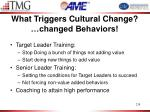 what triggers cultural change changed behaviors