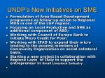 undp s new initiatives on sme