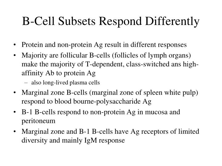 B-Cell Subsets Respond Differently