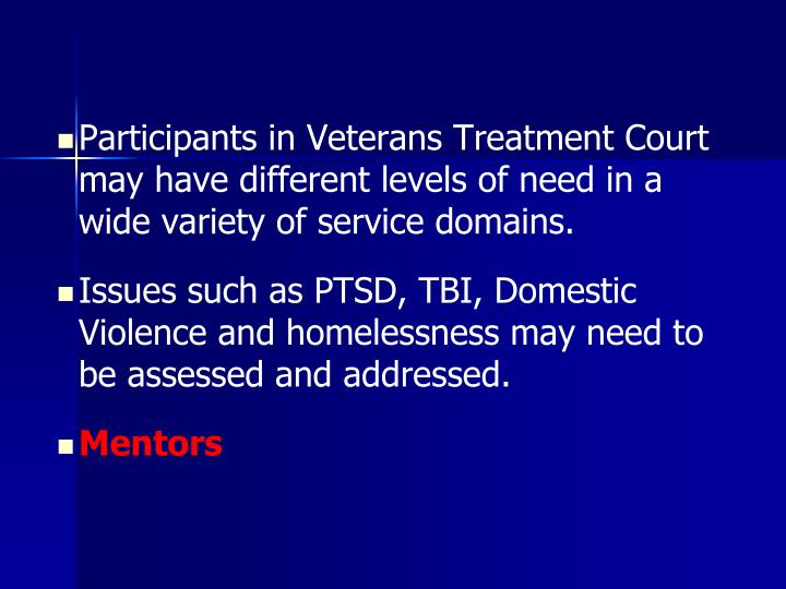 Participants in Veterans Treatment Court may have different levels of need in a wide variety of service domains.