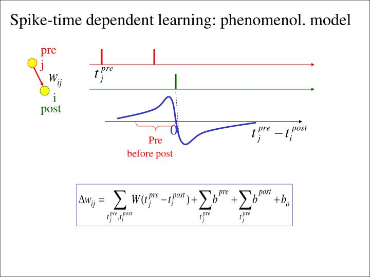 Spike-time dependent learning: phenomenol. model