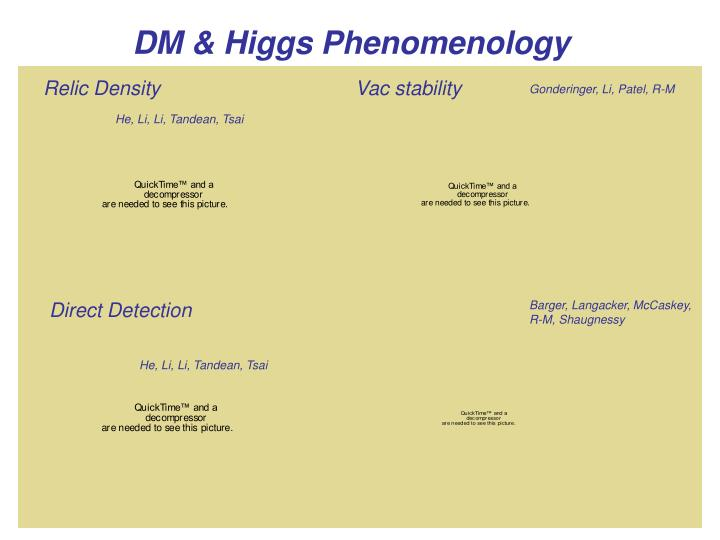 DM & Higgs Phenomenology